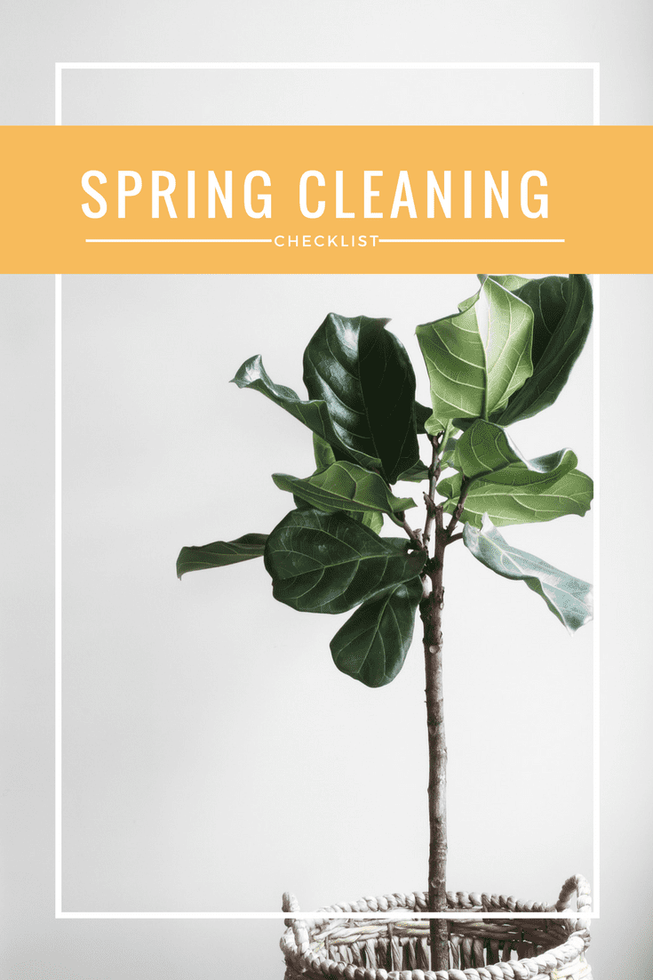 Looking for some tips to help you do some serious Spring Cleaning?!? I've created a checklist for you to help keep you on track!