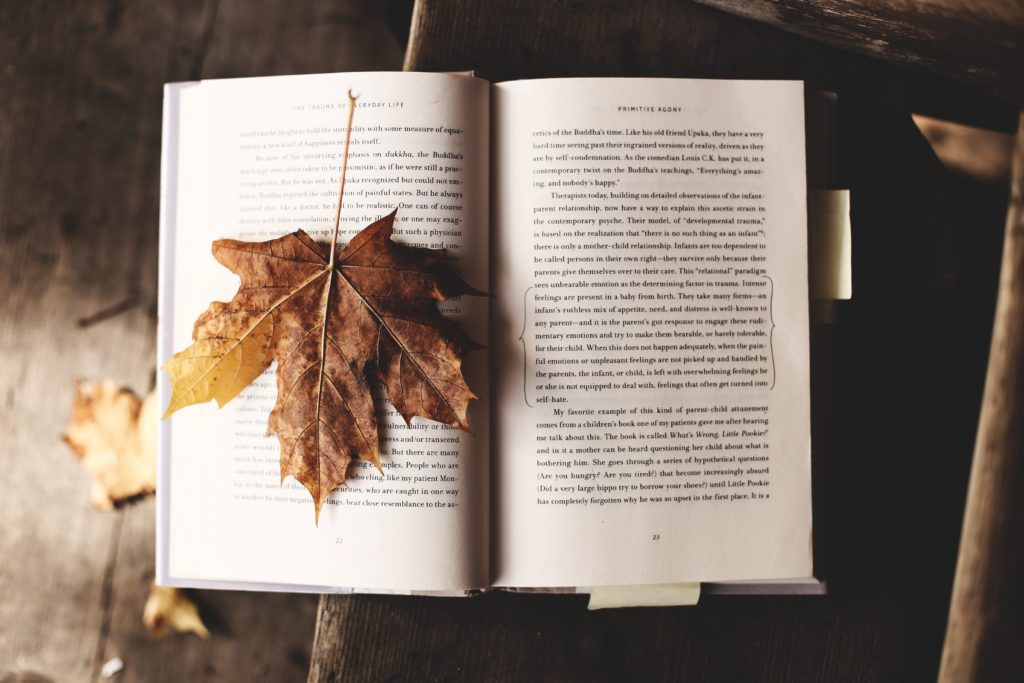 5 Books I Want To Read This Fall |  www.simplystine.com