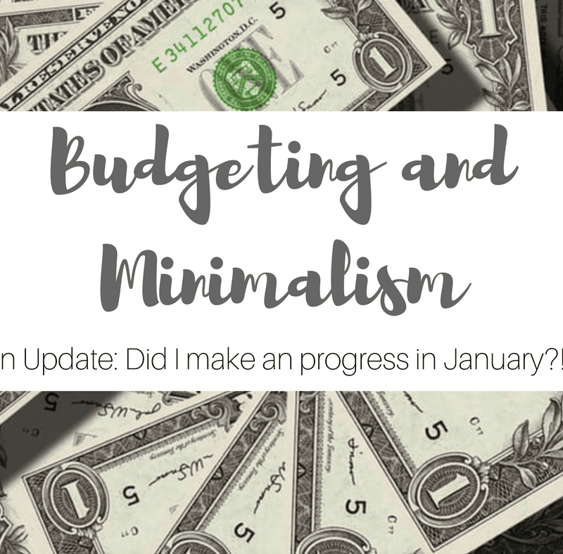 Simply Stine Tries Minimalism and Budgeting- An Update