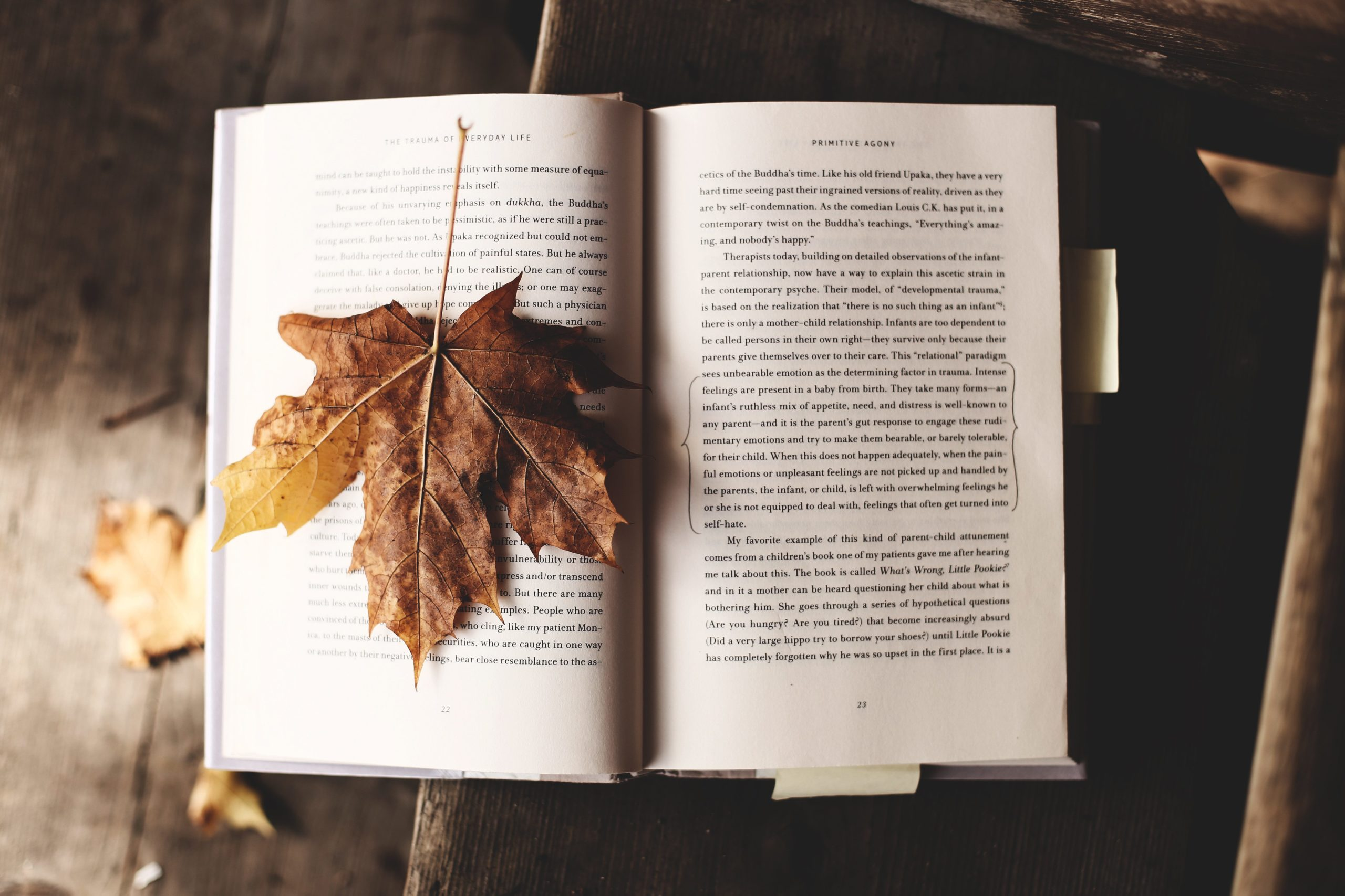 5 Books I Want To Read This Fall