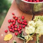 The Benefits of Using Rosehip Oil In Your Skincare Routine