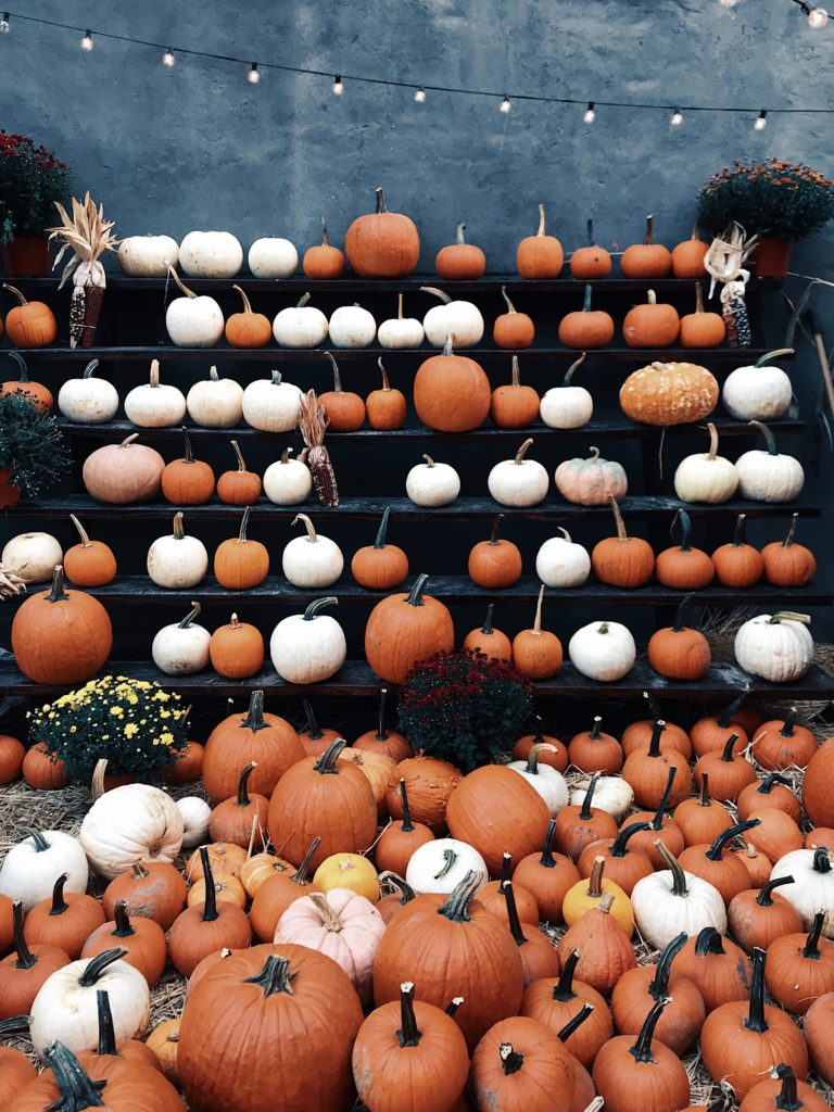 Monday Chat: Pumpkins on stands